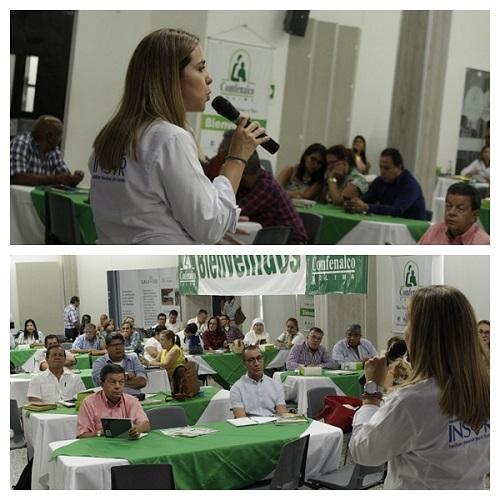 Collage Fotografías Visita Departamento Tolima encuentro con los funcionarios de las Secretarías de Educación e Inclusión municipales y departamentales
